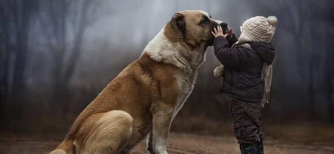 animal-whisperer3