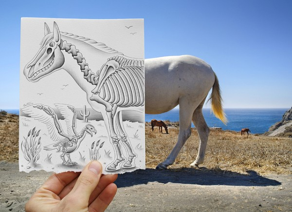 Amazing-Drawing-Vs-Photography-600x435