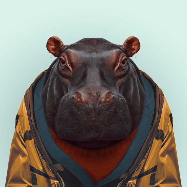 Zoo-Portraits-PHUNRISE-11