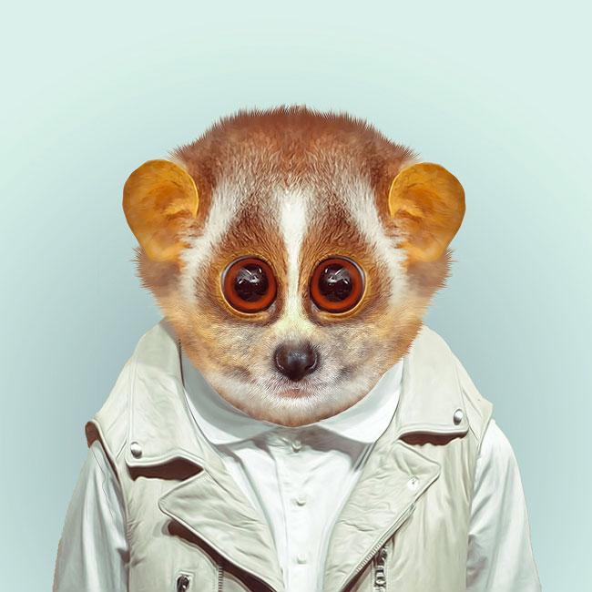 Zoo-Portraits-PHUNRISE-2