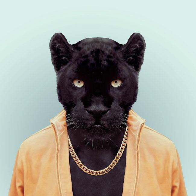Zoo-Portraits-PHUNRISE-5