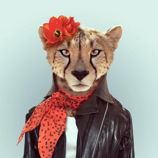 Zoo-Portraits-PHUNRISE-8