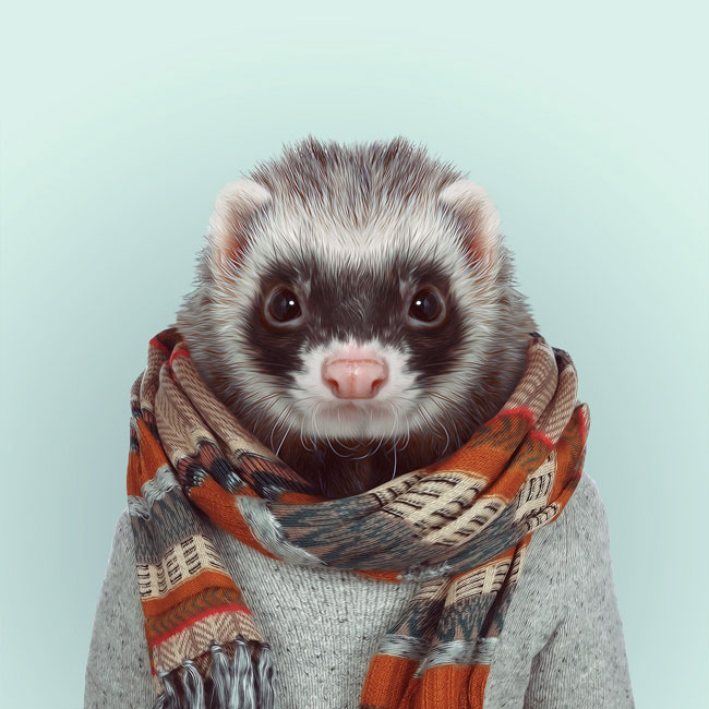 Zoo-Portraits-PHUNRISE-9
