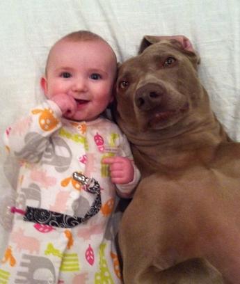 ellen-pet-pic-babydog